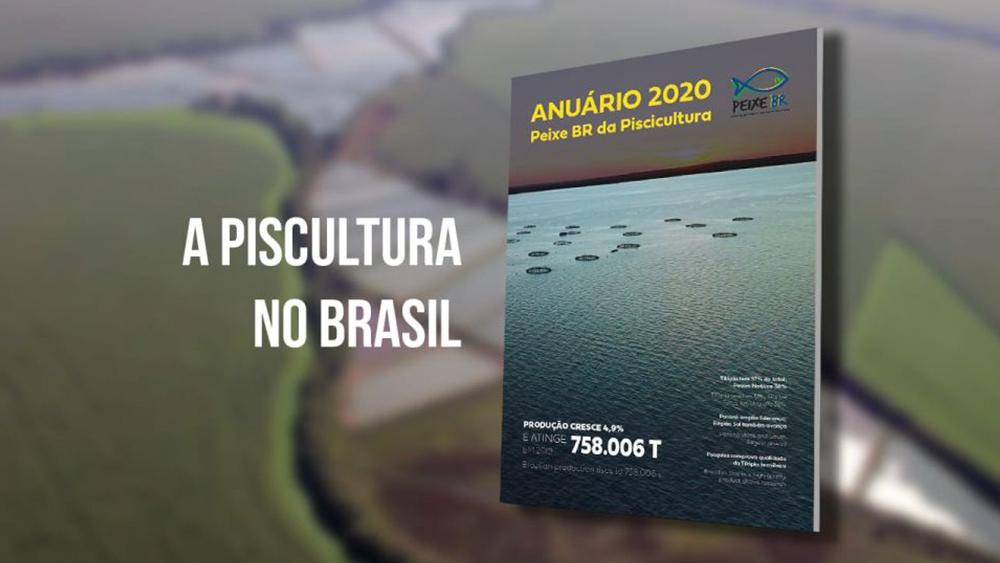 Anuário Brasileiro da Piscicultura 2020: Tilápia lidera e país produziu 758 mil toneladas em 2019