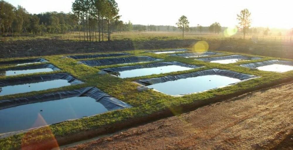 Tipos de tanques para piscicultura